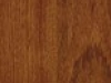 jatoba_exotics_2-strip_1